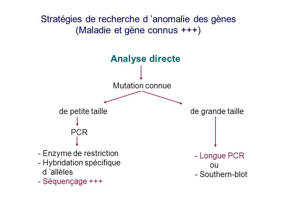 Stratégies de recherche d anomalie des gènes (Maladie et gène connus +++) Analyse directe Mutation connue de petite taillede grande taille PCR - Enzym