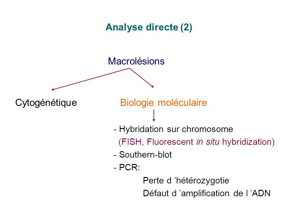 Analyse directe (2) Macrolésions CytogénétiqueBiologie moléculaire - Hybridation sur chromosome (FISH, Fluorescent in situ hybridization) - Southern-b