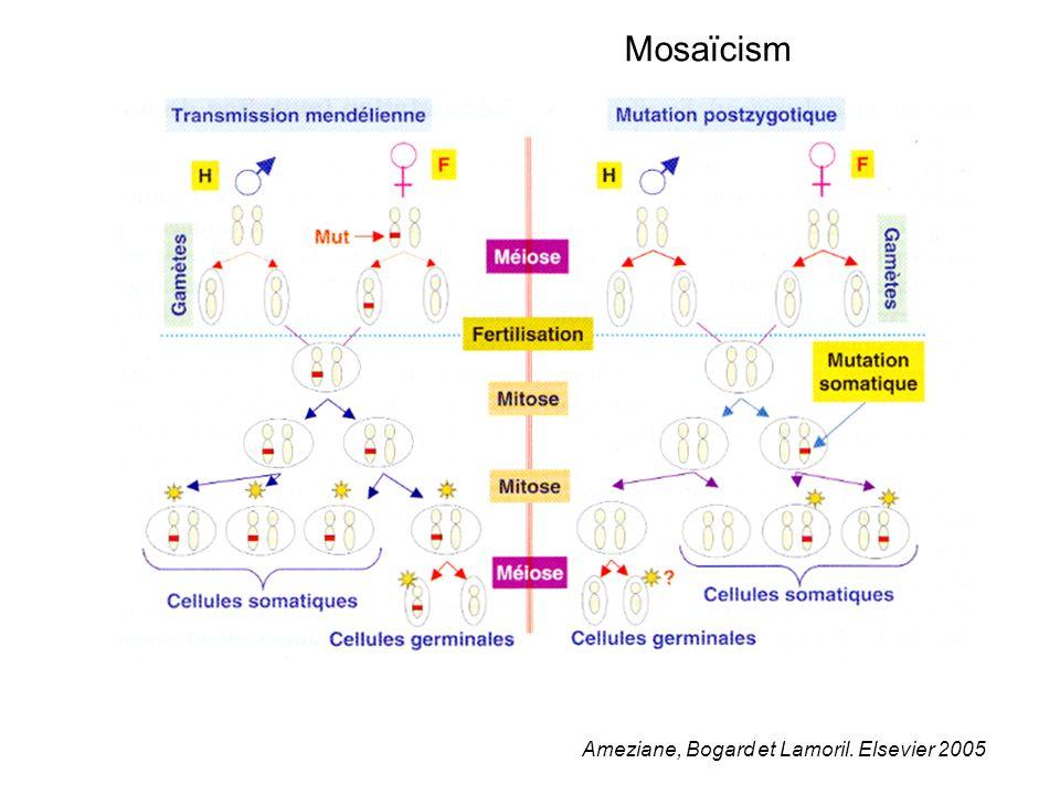 Mosaïcism