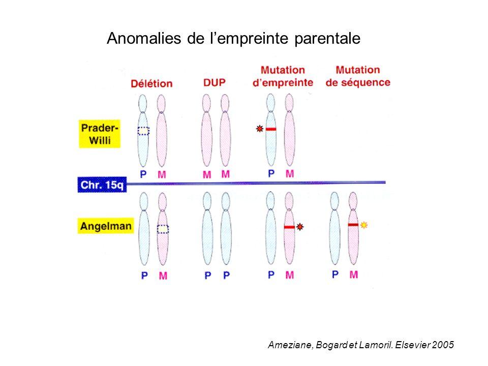 Ameziane, Bogard et Lamoril. Elsevier 2005 Anomalies de lempreinte parentale