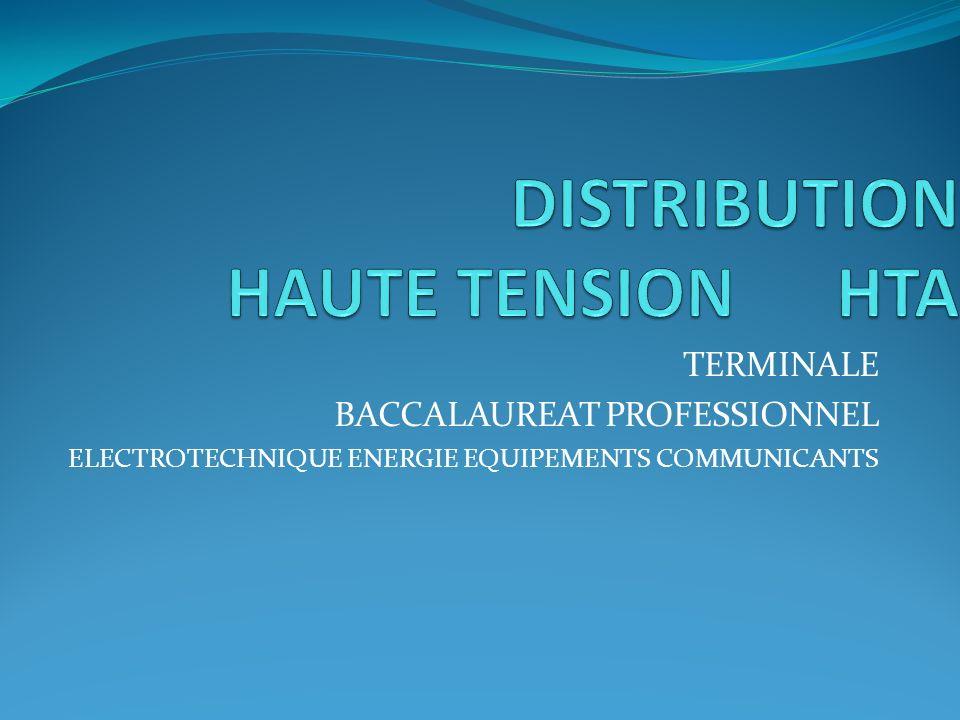 TERMINALE BACCALAUREAT PROFESSIONNEL ELECTROTECHNIQUE ENERGIE EQUIPEMENTS COMMUNICANTS