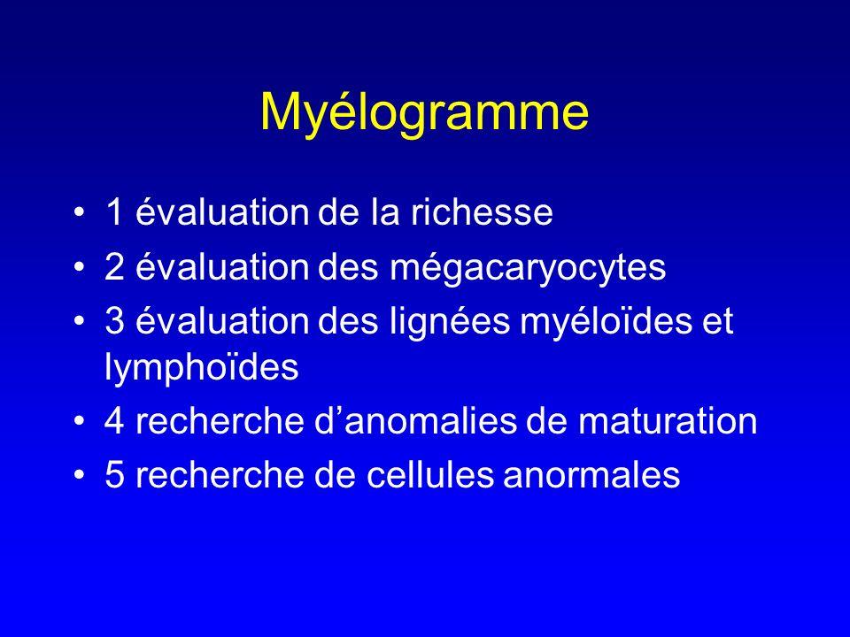 Myélogramme 1 évaluation de la richesse 2 évaluation des mégacaryocytes 3 évaluation des lignées myéloïdes et lymphoïdes 4 recherche danomalies de mat