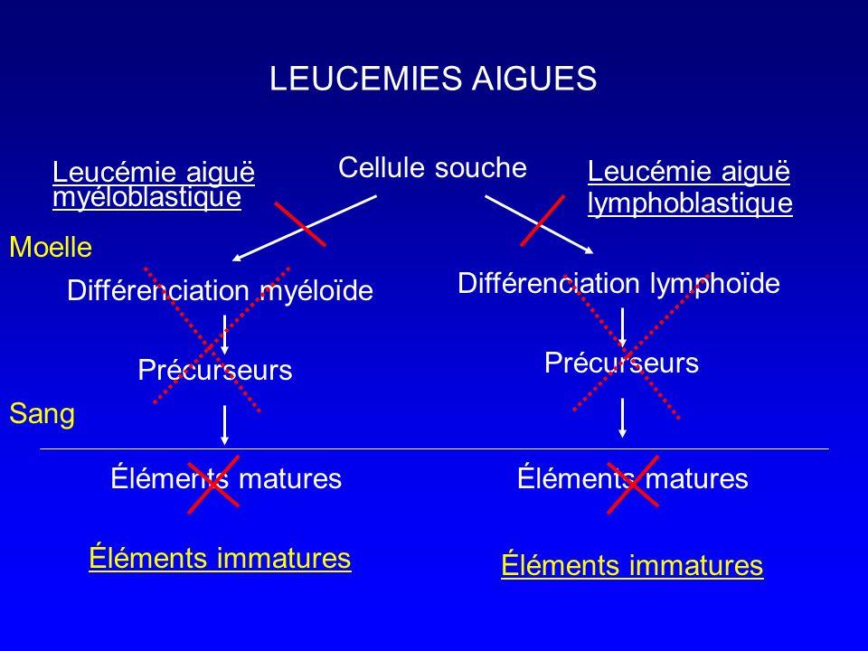 Cellule souche Différenciation myéloïde Différenciation lymphoïde Précurseurs Éléments matures Précurseurs Éléments matures Leucémie aiguë myéloblasti