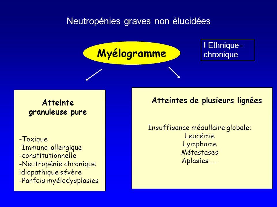 Myélogramme Atteinte granuleuse pure -Toxique -Immuno-allergique -constitutionnelle -Neutropénie chronique idiopathique sévère -Parfois myélodysplasie