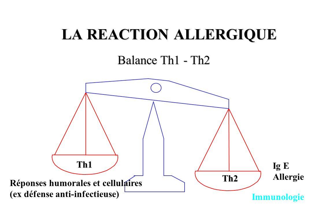 LA REACTION ALLERGIQUE Balance Th1 - Th2 Immunologie Th2 Th1 Ig E Allergie Réponses humorales et cellulaires (ex défense anti-infectieuse)