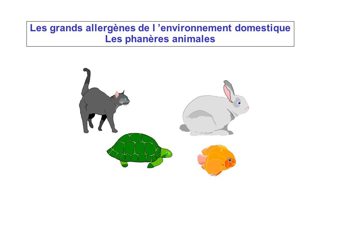 Les grands allergènes de l environnement domestique Les phanères animales Les grands allergènes de l environnement domestique Les phanères animales