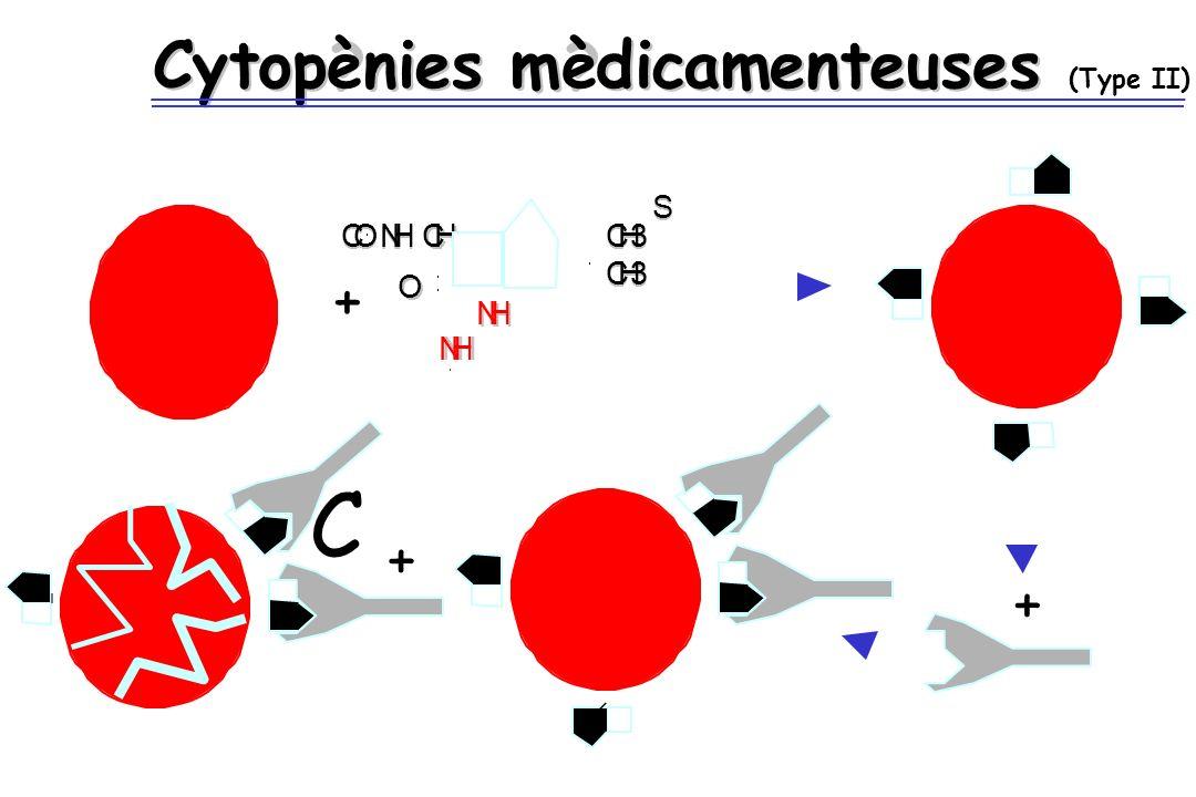 Cytop?nies m?dicamenteuses Cytopènies mèdicamenteuses (Type II) + S S CO CO NH NH CH CH O O NH NH NHNH CH3 CH3 CH3 CH3 + + C
