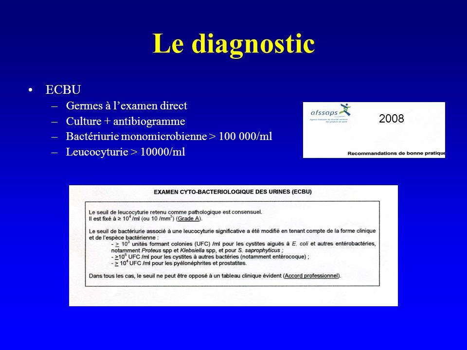 Le diagnostic ECBU –Germes à lexamen direct –Culture + antibiogramme –Bactériurie monomicrobienne > 100 000/ml –Leucocyturie > 10000/ml 2008