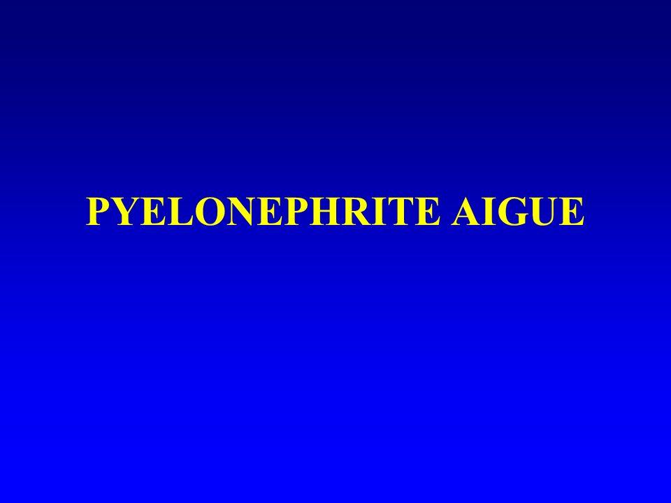 PYELONEPHRITE AIGUE