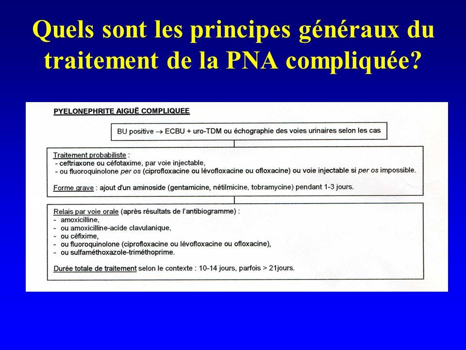 Quels sont les principes généraux du traitement de la PNA compliquée?