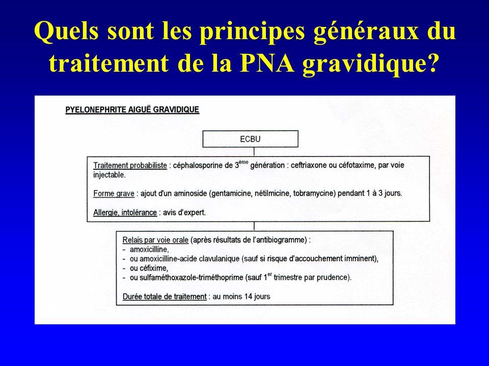 Quels sont les principes généraux du traitement de la PNA gravidique?