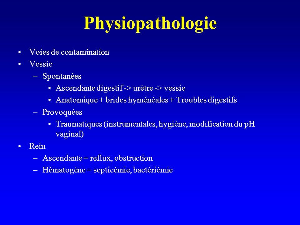 Physiopathologie Voies de contamination Vessie –Spontanées Ascendante digestif -> urètre -> vessie Anatomique + brides hyménéales + Troubles digestifs