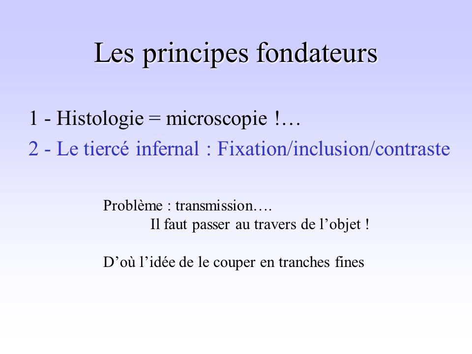 Les principes fondateurs 1 - Histologie = microscopie !… 2 - Le tiercé infernal : Fixation/inclusion/contraste Problème : transmission….