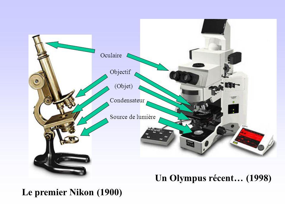 Le premier Nikon (1900) Un Olympus récent… (1998) Source de lumière Condensateur (Objet) Oculaire Objectif