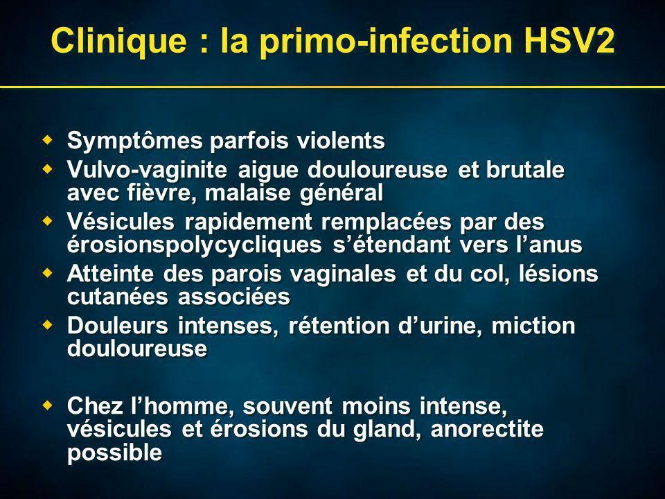 Clinique : la primo-infection HSV2 Symptômes parfois violents Vulvo-vaginite aigue douloureuse et brutale avec fièvre, malaise général Vésicules rapidement remplacées par des érosionspolycycliques sétendant vers lanus Atteinte des parois vaginales et du col, lésions cutanées associées Douleurs intenses, rétention durine, miction douloureuse Chez lhomme, souvent moins intense, vésicules et érosions du gland, anorectite possible Symptômes parfois violents Vulvo-vaginite aigue douloureuse et brutale avec fièvre, malaise général Vésicules rapidement remplacées par des érosionspolycycliques sétendant vers lanus Atteinte des parois vaginales et du col, lésions cutanées associées Douleurs intenses, rétention durine, miction douloureuse Chez lhomme, souvent moins intense, vésicules et érosions du gland, anorectite possible