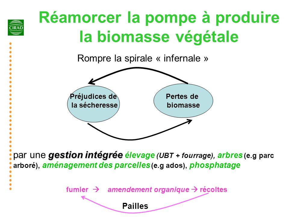 22 Réamorcer la pompe à produire la biomasse végétale Pertes de biomasse Préjudices de la sécheresse Rompre la spirale « infernale » gestion intégrée