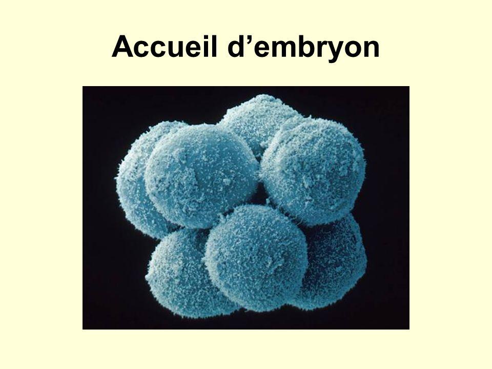 Accueil dembryon