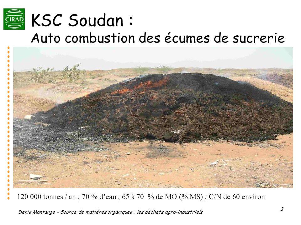 Denis Montange - Source de matières organiques : les déchets agro-industriels 3 KSC Soudan : Auto combustion des écumes de sucrerie 120 000 tonnes / a