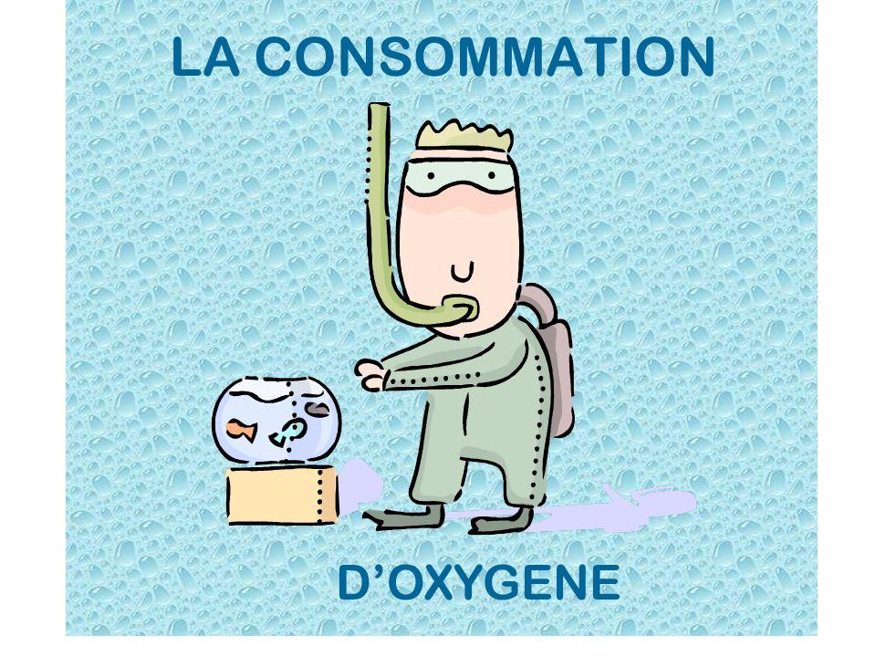 LA CONSOMMATION DOXYGENE