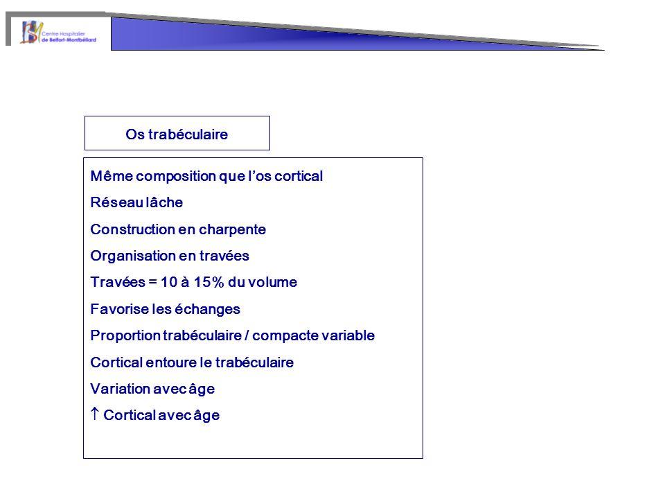 Os trabéculaire Même composition que los cortical Réseau lâche Construction en charpente Organisation en travées Travées = 10 à 15% du volume Favorise