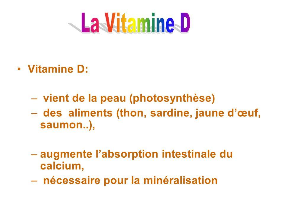 Vitamine D: – vient de la peau (photosynthèse) – des aliments (thon, sardine, jaune dœuf, saumon..), –augmente labsorption intestinale du calcium, – n