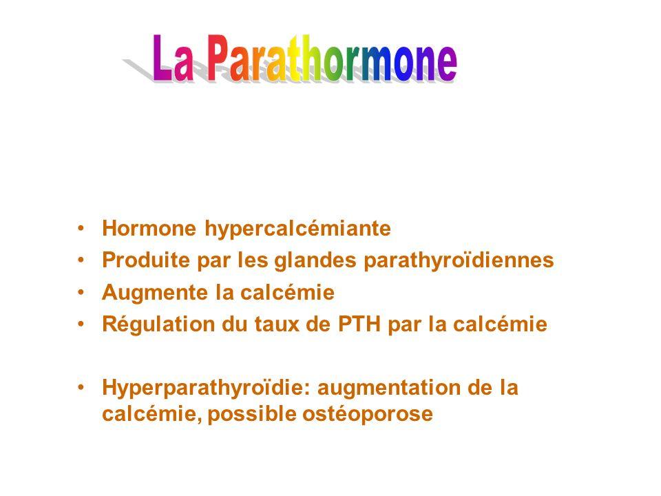 Hormone hypercalcémiante Produite par les glandes parathyroïdiennes Augmente la calcémie Régulation du taux de PTH par la calcémie Hyperparathyroïdie: