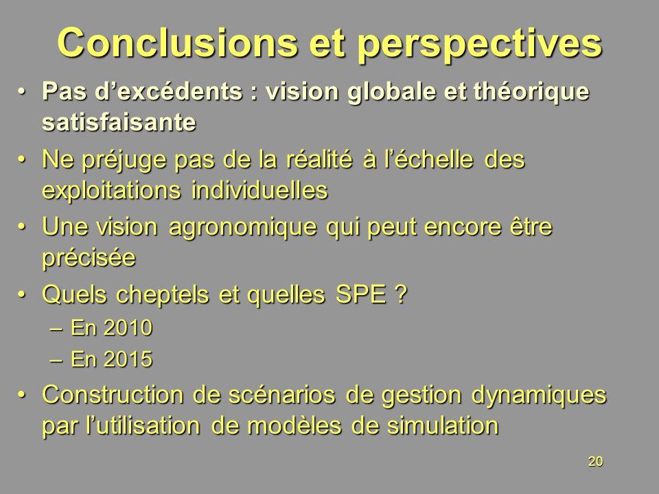 20 Conclusions et perspectives Pas dexcédents : vision globale et théorique satisfaisantePas dexcédents : vision globale et théorique satisfaisante Ne