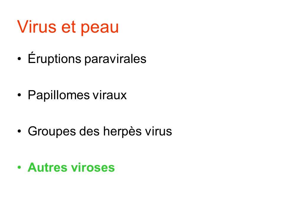 Virus et peau Éruptions paravirales Papillomes viraux Groupes des herpès virus Autres viroses