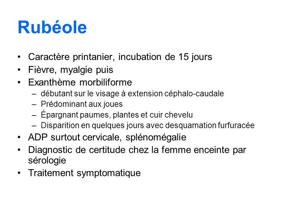 Rubéole Caractère printanier, incubation de 15 jours Fièvre, myalgie puis Exanthème morbiliforme –débutant sur le visage à extension céphalo-caudale –