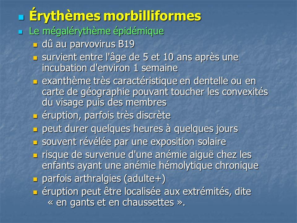 Érythèmes morbilliformes Érythèmes morbilliformes Le mégalérythème épidémique Le mégalérythème épidémique dû au parvovirus B19 dû au parvovirus B19 su