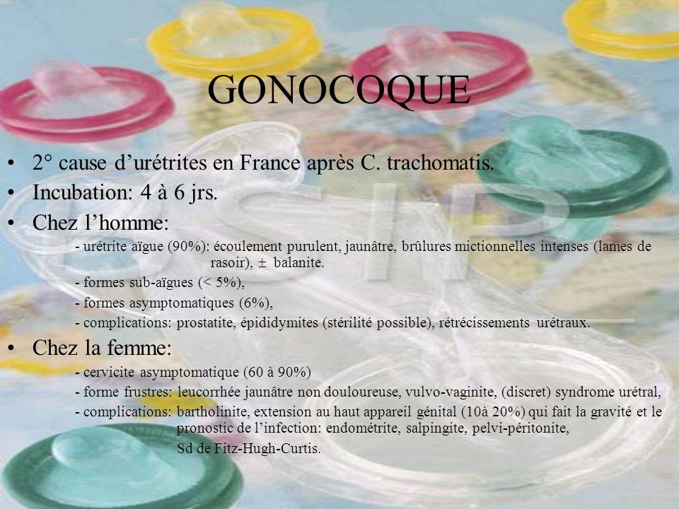 GONOCOQUE 2° cause durétrites en France après C. trachomatis. Incubation: 4 à 6 jrs. Chez lhomme: - urétrite aïgue (90%): écoulement purulent, jaunâtr