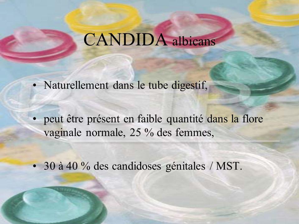 CANDIDA albicans Naturellement dans le tube digestif, peut être présent en faible quantité dans la flore vaginale normale, 25 % des femmes, 30 à 40 %