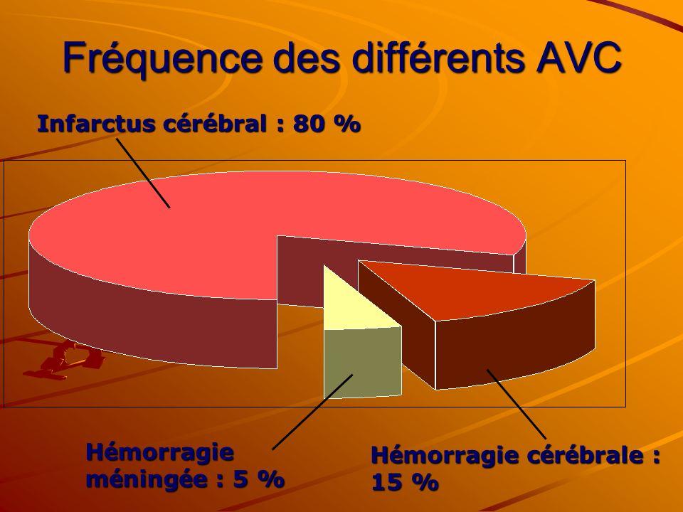 Fréquence des différents AVC Infarctus cérébral : 80 % H é morragie m é ning é e : 5 % H é morragie c é r é brale : 15 %