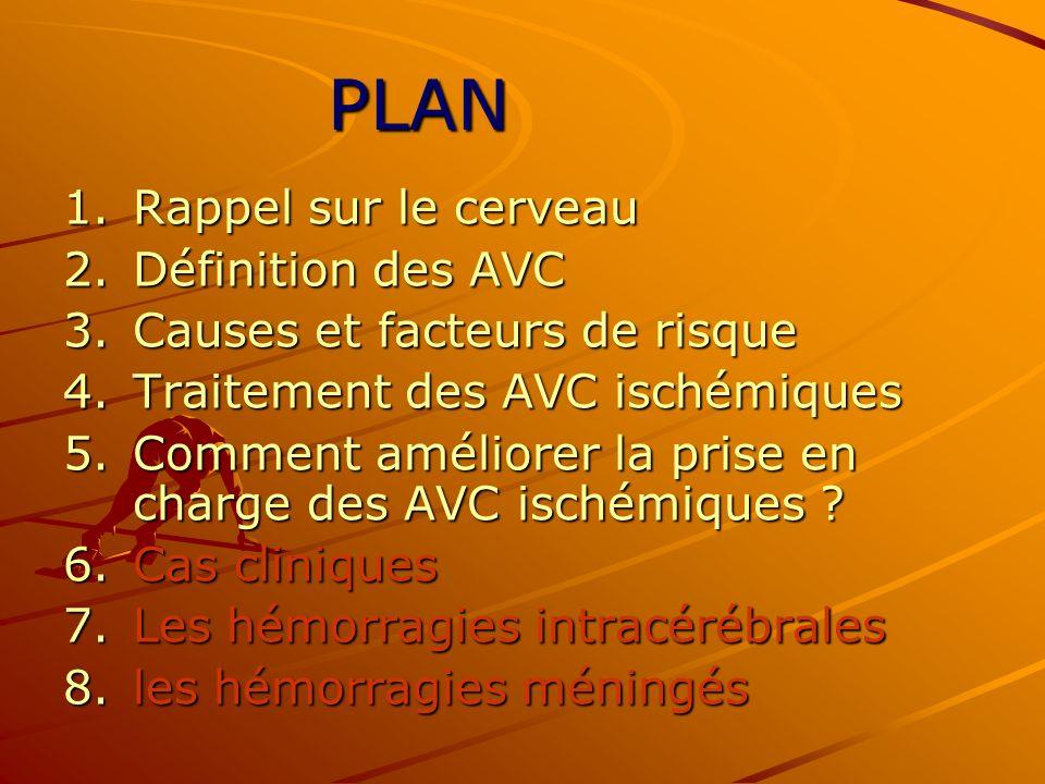 1.Rappel sur le cerveau 2.Définition des AVC 3.Causes et facteurs de risque 4.Traitement des AVC ischémiques 5.Comment améliorer la prise en charge de