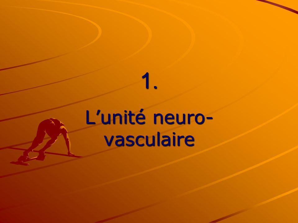 1. Lunité neuro- vasculaire
