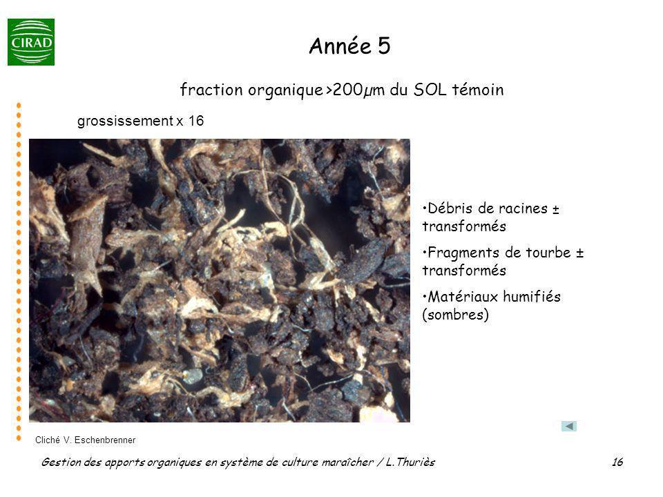 Gestion des apports organiques en système de culture maraîcher / L.Thuriès 16 grossissement x 16 fraction organique >200µm du SOL témoin Année 5 Débri
