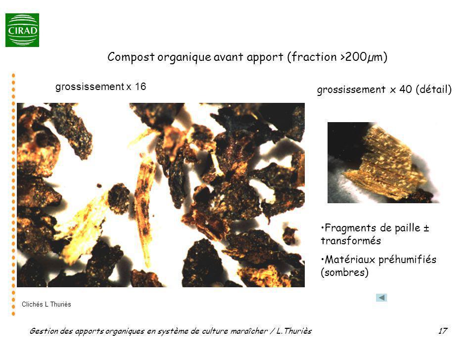 Gestion des apports organiques en système de culture maraîcher / L.Thuriès 17 grossissement x 16 grossissement x 40 (détail) Compost organique avant a