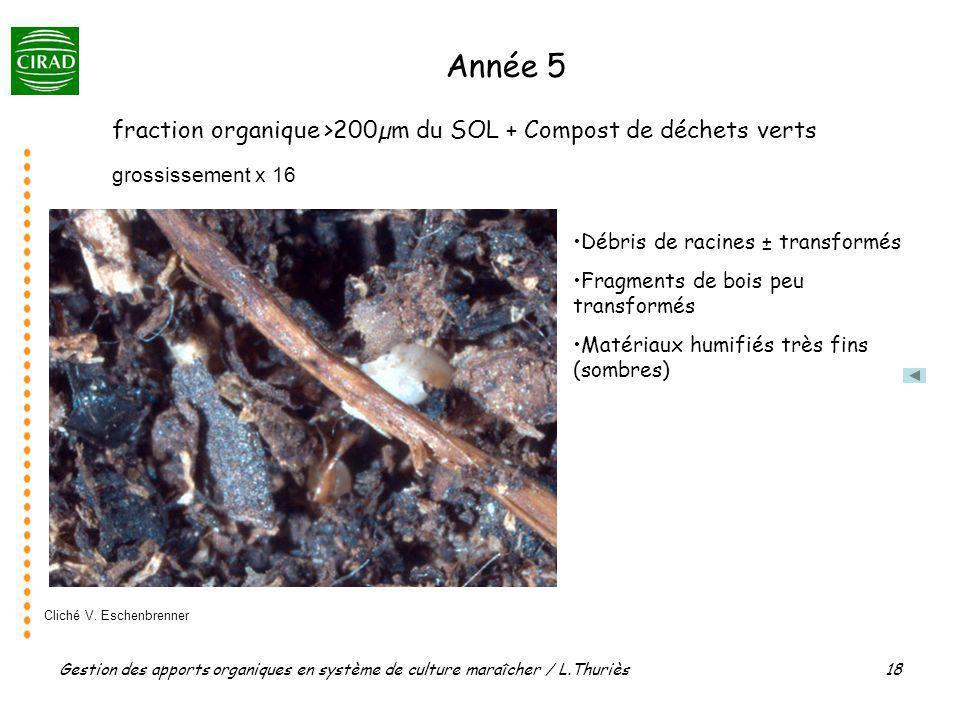 Gestion des apports organiques en système de culture maraîcher / L.Thuriès 18 grossissement x 16 fraction organique >200µm du SOL + Compost de déchets