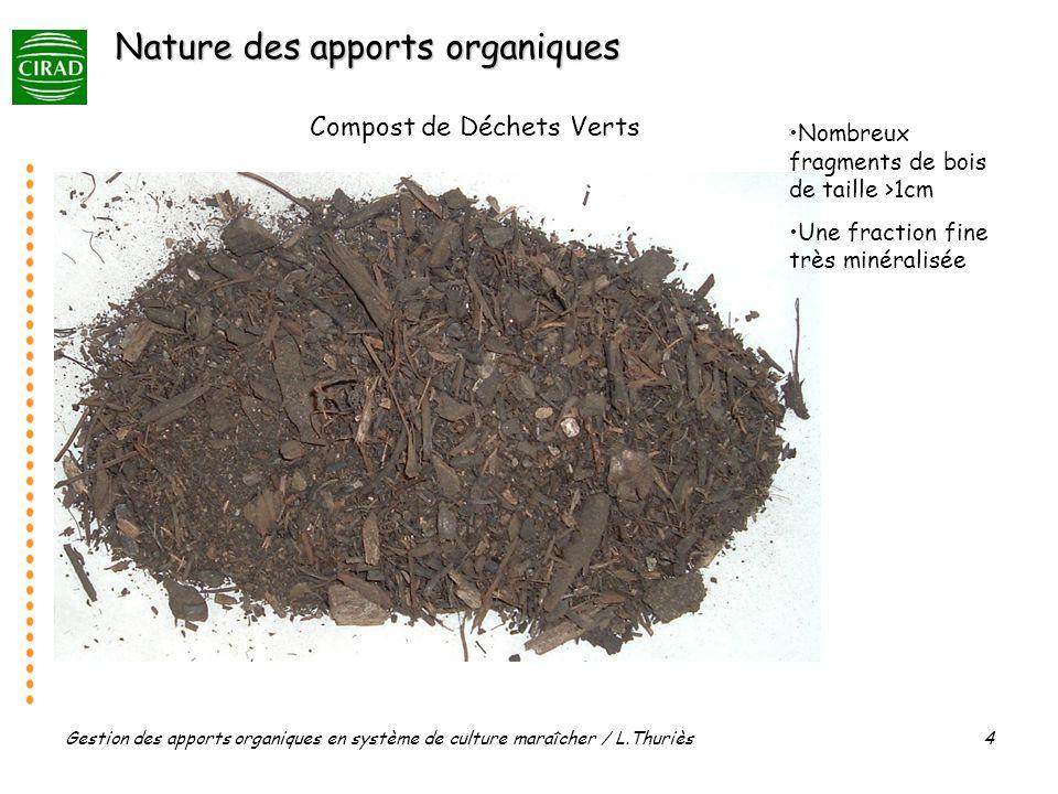 Gestion des apports organiques en système de culture maraîcher / L.Thuriès 15 grossissement x 16 fraction organique >200µm du SOL témoin Année 5 Débris de racines ± transformés Fragments de tourbe ± transformés Matériaux humifiés (sombres) Cliché V.