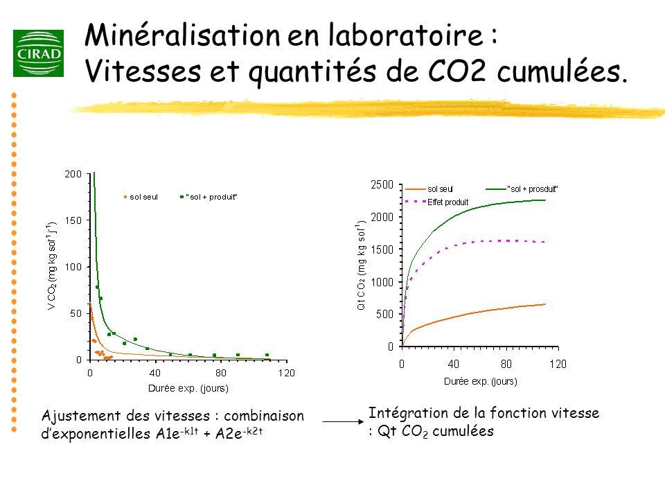 Minéralisation en laboratoire : Vitesses et quantités de CO2 cumulées. Ajustement des vitesses : combinaison dexponentielles A1e -k1t + A2e -k2t Intég