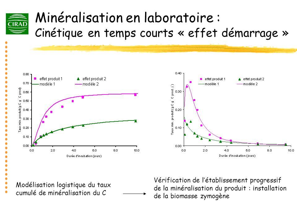 Minéralisation en laboratoire : Cinétique en temps courts « effet démarrage » Vérification de létablissement progressif de la minéralisation du produi