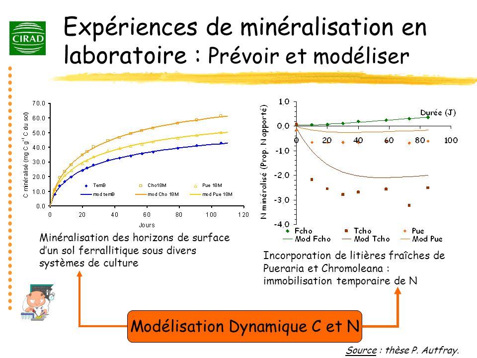 Expériences de minéralisation en laboratoire : Prévoir et modéliser Source : thèse P. Autfray. Minéralisation des horizons de surface dun sol ferralli