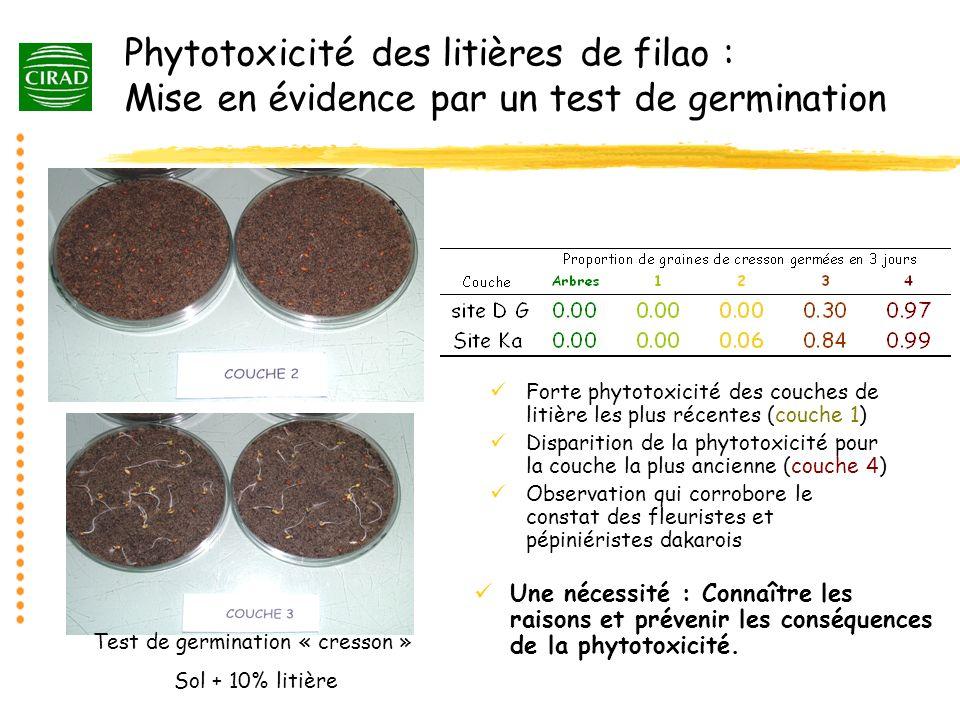 Phytotoxicité des litières de filao : Mise en évidence par un test de germination Forte phytotoxicité des couches de litière les plus récentes (couche