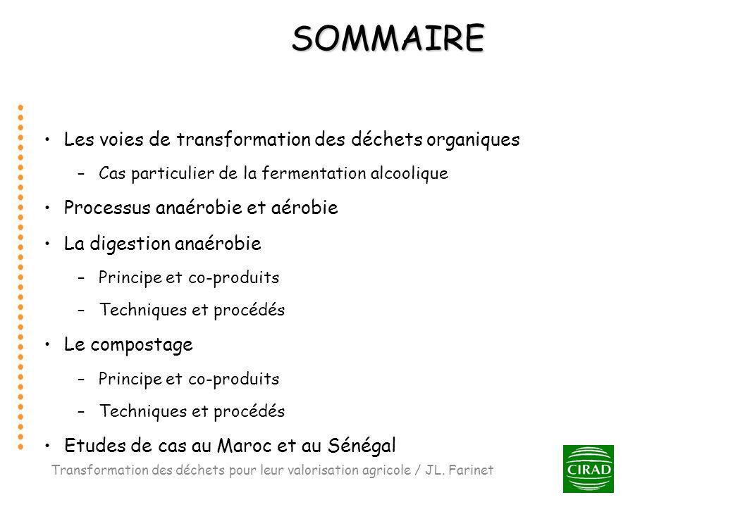 SOMMAIRE Les voies de transformation des déchets organiques –Cas particulier de la fermentation alcoolique Processus anaérobie et aérobie La digestion