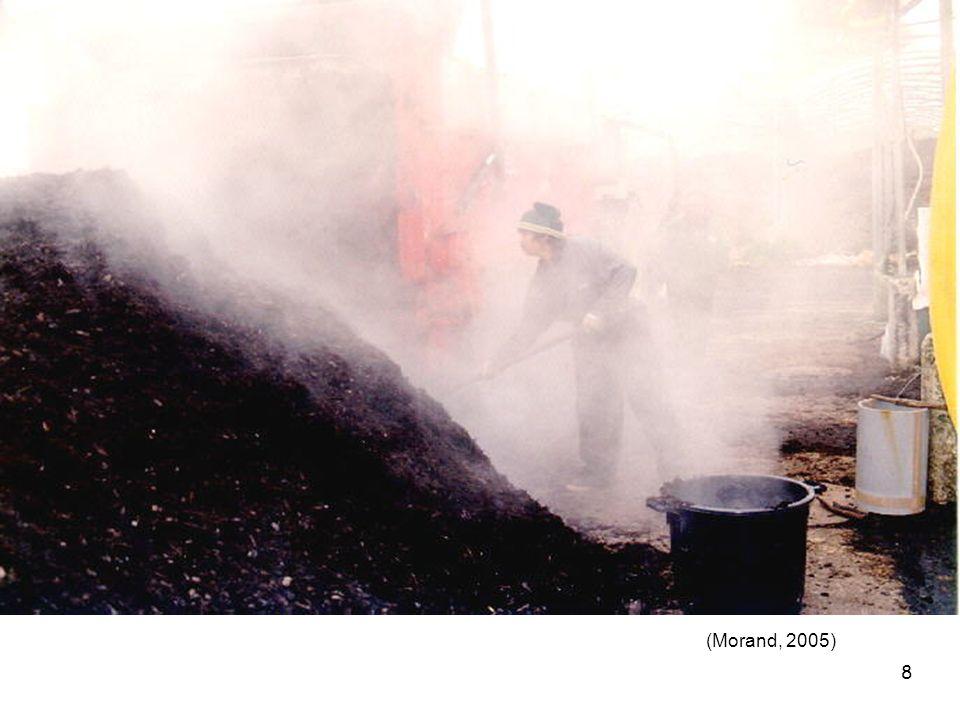 9 Processus microbiologiques et physiques Différentes phases Transformation du carbone Transformation de lazote Volatilisation