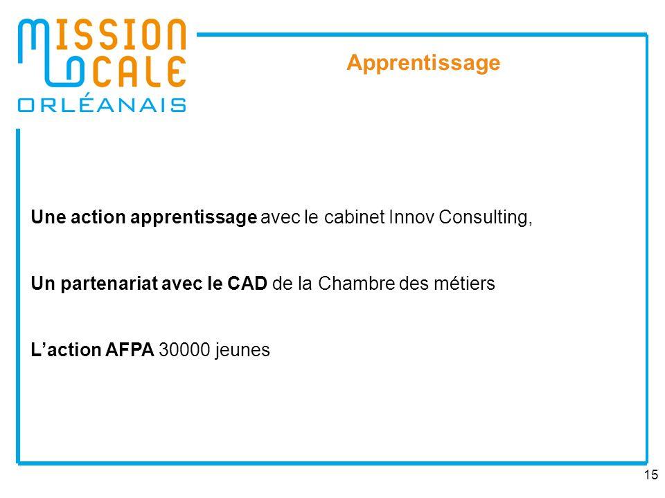 15 Apprentissage Une action apprentissage avec le cabinet Innov Consulting, Un partenariat avec le CAD de la Chambre des métiers Laction AFPA 30000 je