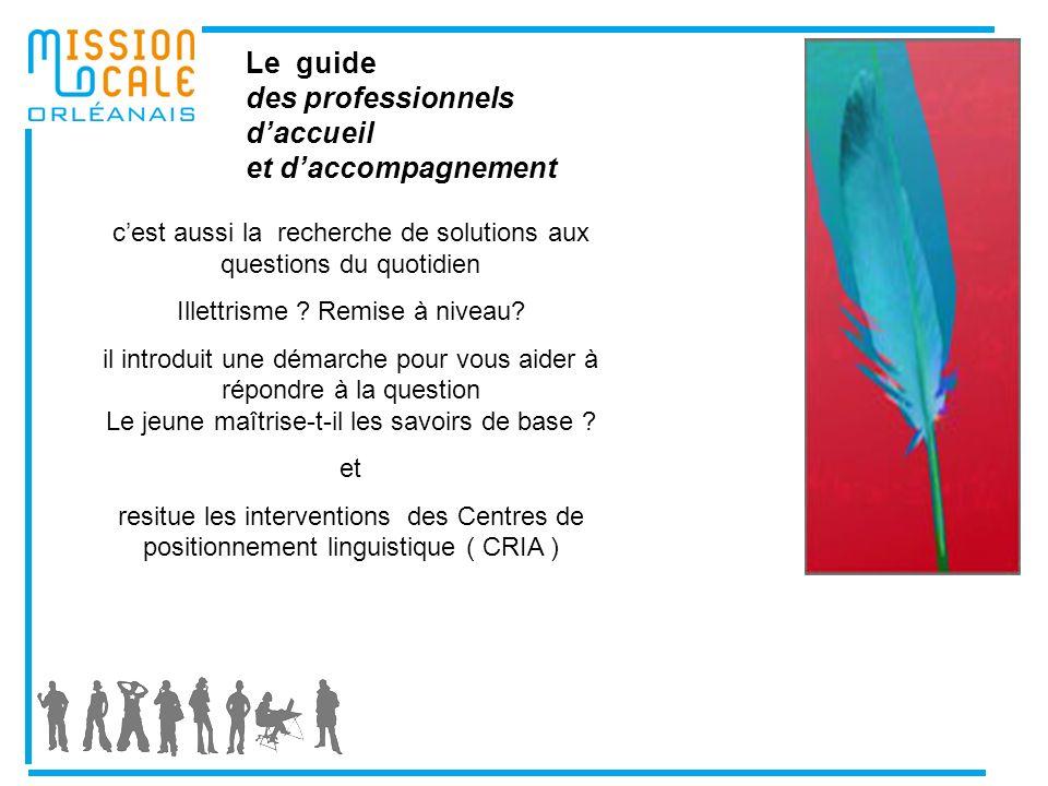 Le guide des professionnels daccueil et daccompagnement cest aussi la recherche de solutions aux questions du quotidien Illettrisme .