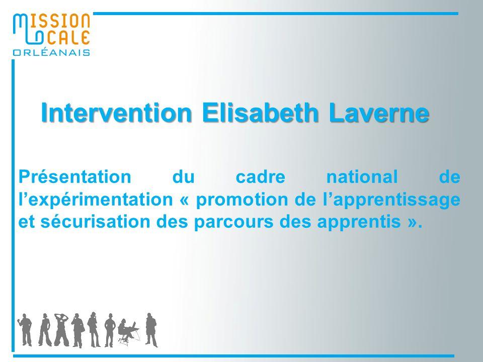 Intervention Elisabeth Laverne Intervention Elisabeth Laverne Présentation du cadre national de lexpérimentation « promotion de lapprentissage et sécurisation des parcours des apprentis ».