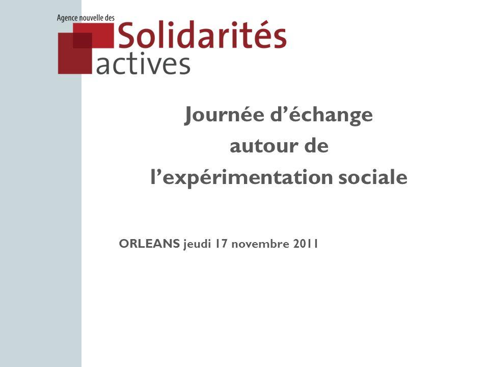 Journée déchange autour de lexpérimentation sociale ORLEANS jeudi 17 novembre 2011