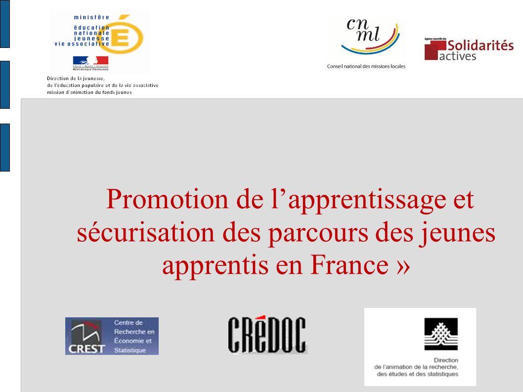 Promotion de lapprentissage et sécurisation des parcours des jeunes apprentis en France »
